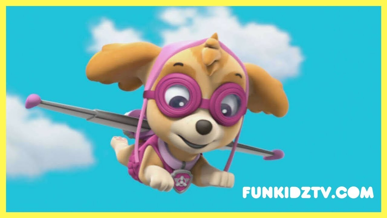 Paw Patrol Skyetake Flight 2018 Cartoons For Kids