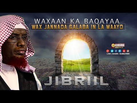 """"""" RABIYOW WAXAAN KA BAQAYAA  WAX JANNADA GALABA IN LAWAAYO """" - JIBRIIL CS - ᴴᴰ┇ Sh. Maxamed Umal"""