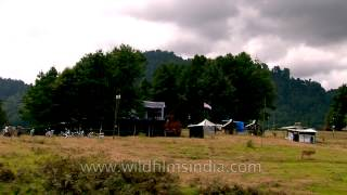 Concert Stage from a distance: Ziro Music Festival