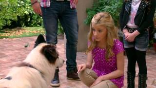 Собака точка ком (Сезон 2 Серия 15)