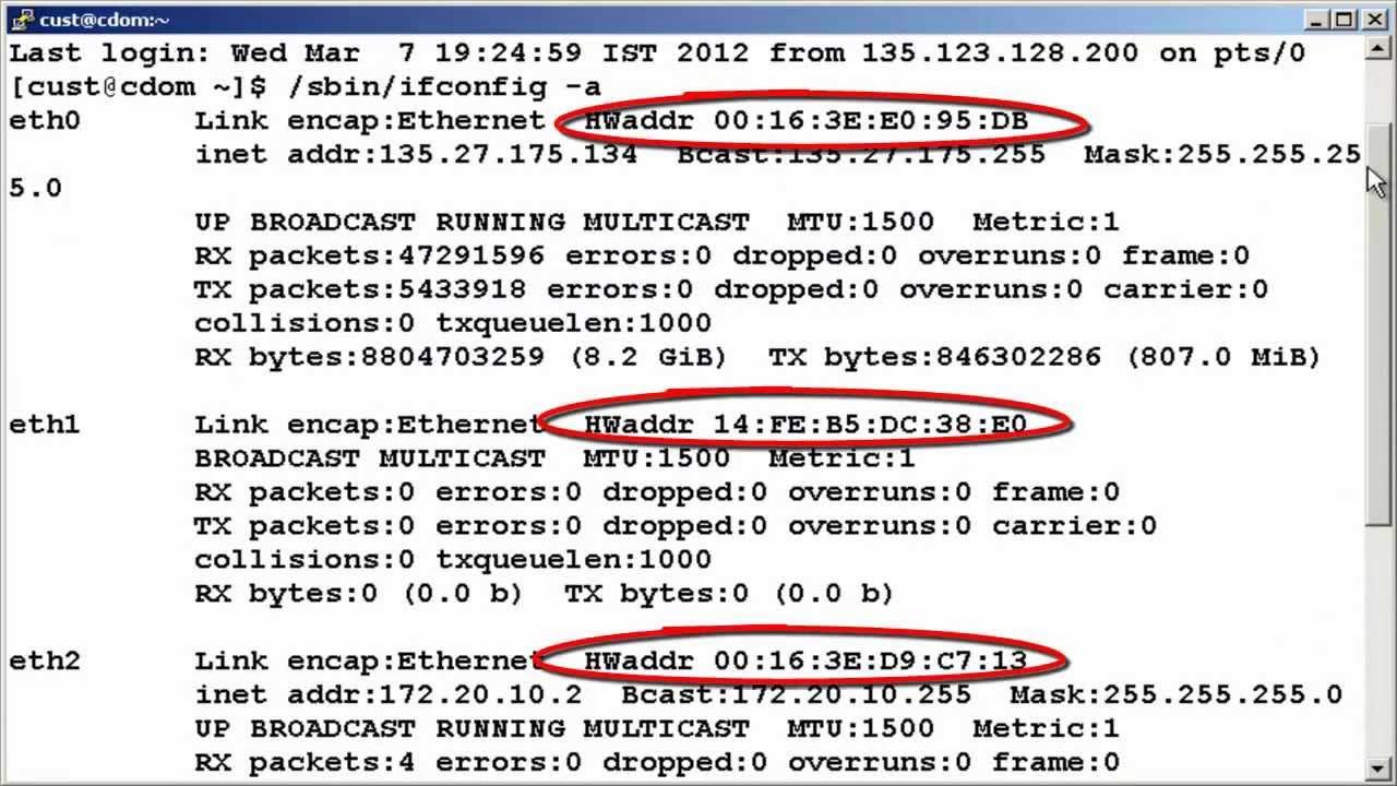 How to retrieve host-id information in Avaya System Platform