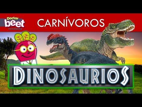 En Español Para Niños Youtube Acuaticos Juguetes Dinosaurios Yf7gI6vmby