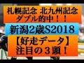 新潟2歳ステークス2018【好走データ】項目満点の注目馬3頭!!