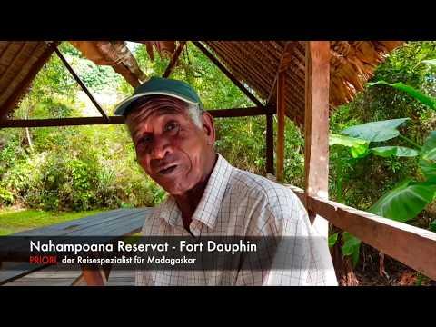Nahampoana Reservat, Fort Dauphin / Tolagnaro, Madagaskar