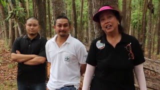 OA AKO Telemag #35 Forestation WOOD Be Your Legacy