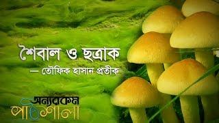 01. Interesting Question   মজার প্রশ্ন   OnnoRokom Pathshala