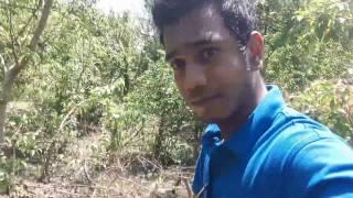 musapur || noakhali