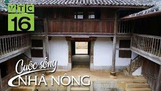 Con cháu ''vua mèo'' nơi cao nguyên đá Hà Giang - CSNN 352 | VTC16
