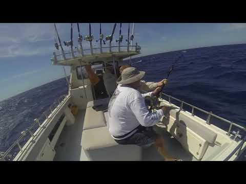 Topcat Fishing Charters