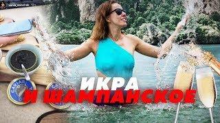 СОБЧАК УМЕЕТ ОТДЫХАТЬ // Алексей Казаков