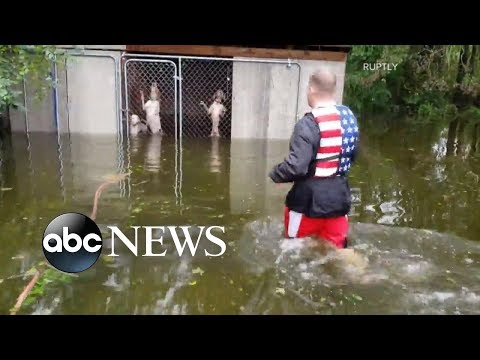 Volunteers rescue residents, pets from flooded homes during Florence