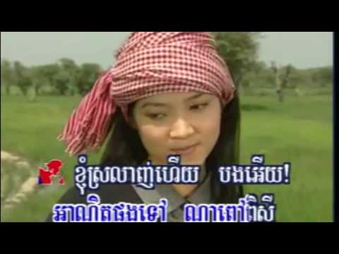 សត្វចាបយំចេប Sat Chab Yum Cheb, Khmer Song Lyrics, Karaoke K