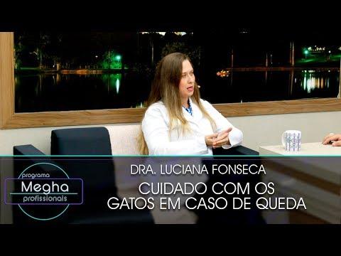 Cuidado Com Os Gatos | Dra. Luciana Fonseca | Pgm N° 656 | B2