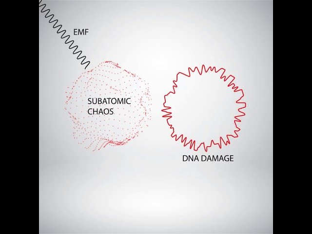 Sub-Atomic Chaos & How Products Are Harmonized