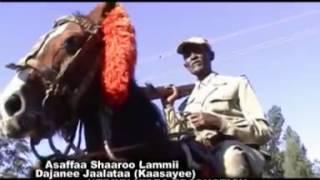 Dejene Jalata - Assaffaa Shaaroo lammii (Oromo Music)