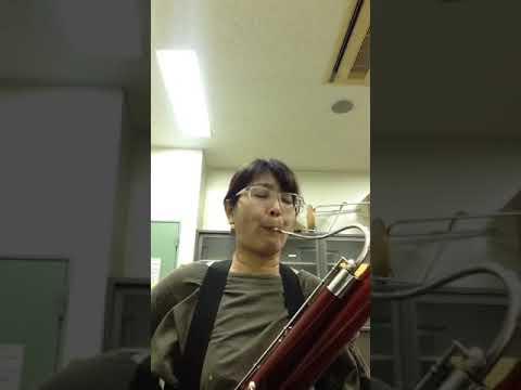 ファゴット♪伊藤綾子 夜の練習には...
