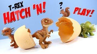 Jurassic World Tyrannosaurus Rex Hatch 'N Play Dinos Eggs Toys Mattel