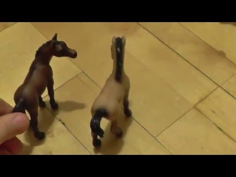 1 серия. Лошади против диких кошек.(Моё первое видео :))