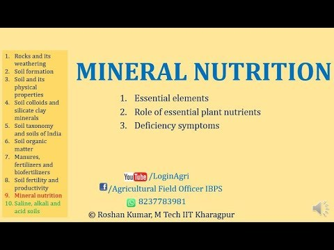Mineral Nutrition, Role Of Essential Nutrients, Deficiency Sym For AFO, NABARD By Roshan Kumar