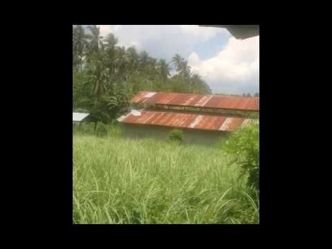 Piggery Business For Sale In Rosario, Batangas