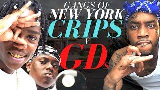 New York's Deadly Gang War - Crips v GDs