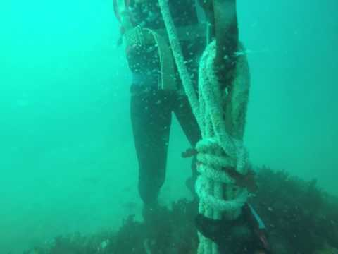 Saldanha Diving and Blasting Services