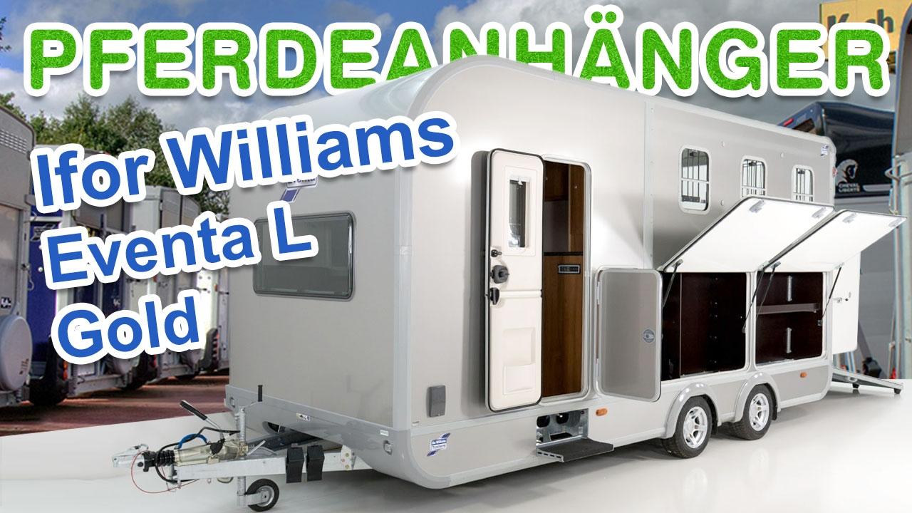 pferdeanh nger ifor williams eventa l gold mit. Black Bedroom Furniture Sets. Home Design Ideas