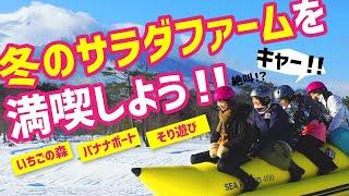 冬のサラダファームを満喫しよう!! thumbnail