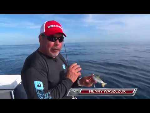 Henry Waszczuk Jigs The Swimabait Series In Deep Water