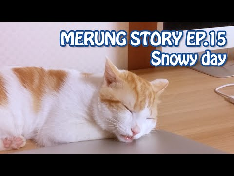 Merung Story EP.15 메룽이 어벙벙 (Snowy day) Orc cat