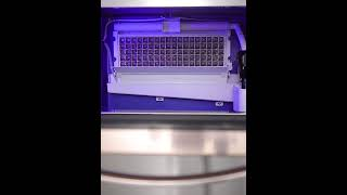 업소용 로즈골드 얼음제조기 제빙기 대용량 사무실