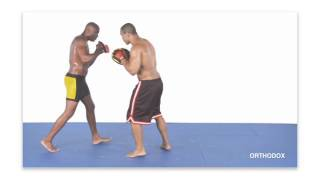 Anderson Silva Striking Combos For MMA  (With English Subtitles) CD1