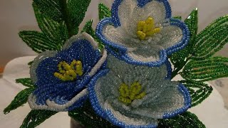 Цветы из бисера. М.К.петунии красотунии из бисера.