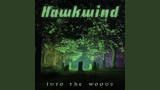 Provided to YouTube by The Orchard Enterprises The Wind · Hawkwind ...