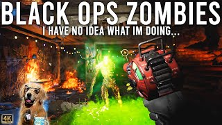 Call of Duty Black Ops Zombies - I have no Idea what I'm doing...