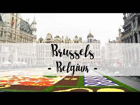 Brussels, Belgium - Flower Carpet 2016 || My Travel Diary