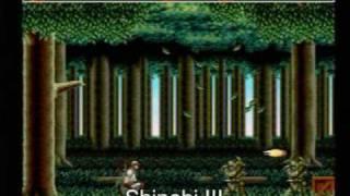 100 Sega Genesis / Mega Drive Games (Taken From an Original Genesis)
