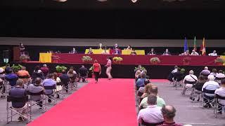 Assembleia Municipal Extraordinária de Barcelos - 22 de julho, 2020