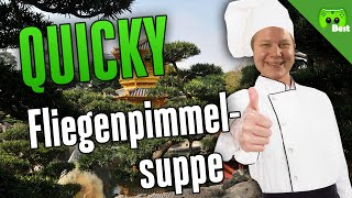 FLIEGENPIMMELSUPPE 🎮 Quicky #182 | Best of PietSmiet