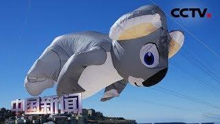 [中国新闻] 澳大利亚最大风筝节开幕 各色风筝争奇斗艳   CCTV中文国际