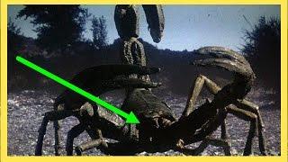 Top 10 world scariest prehistoric monster