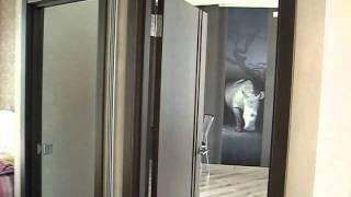dparenda.com Апартаменты в Мост-Сити Днепропетровск(dparenda.com Апартамены находятся в новом элитном доме МОСТ АПАРТАМЕНТ ЦЕНТР. Из окон апартаментов открывается..., 2011-10-16T14:21:57.000Z)
