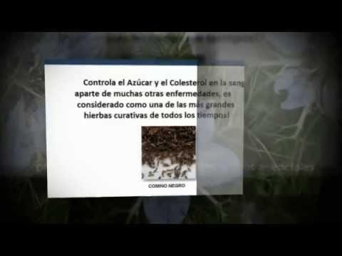 how to make nigella sativa concoction