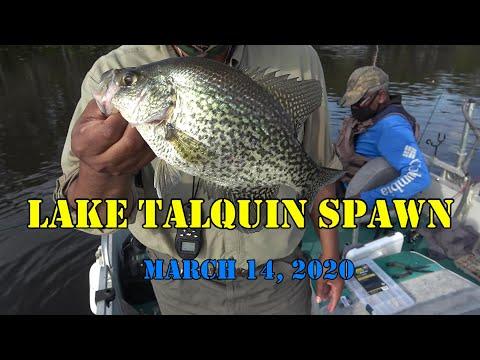 Lake Talquin Crappie Spawn - Eps#36