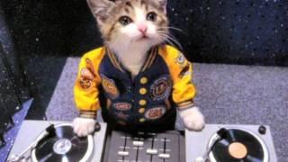 Dj-ŞıMaRıK  Mix 2012