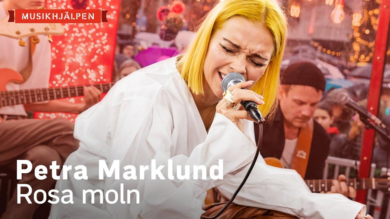 sanningen petra marklund