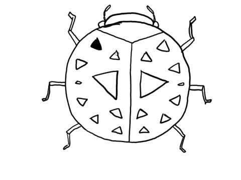 สอนวาดรูป การ์ตูน แมลงเต่าทอง สำหรับระบายสี
