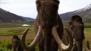 BBC Walking with Beasts.flv