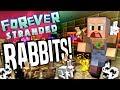 Minecraft - RABBITS?! - Forever Stranded #73