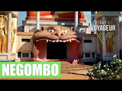 Negombo (Sri Lanka) : tourist guide in english - video guide tour in 4K